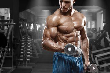 Vücut geliştirme hipertrofi maksimal kuvvet yağ yakımı