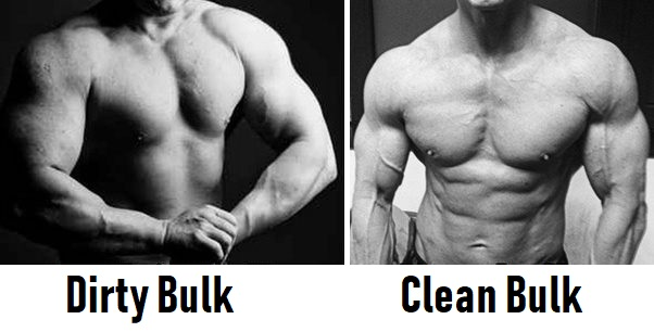 clean bulk dirty bulk