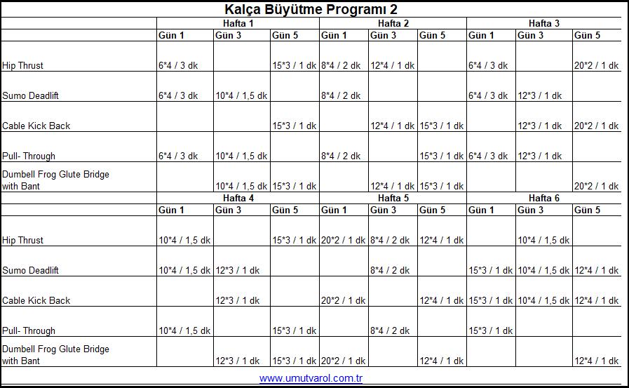 Kalça Büyütme Programı 2